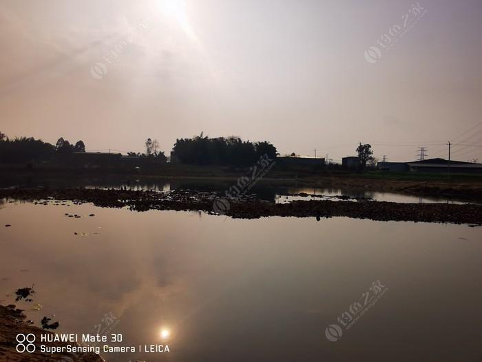 龙王湾生态休闲钓场