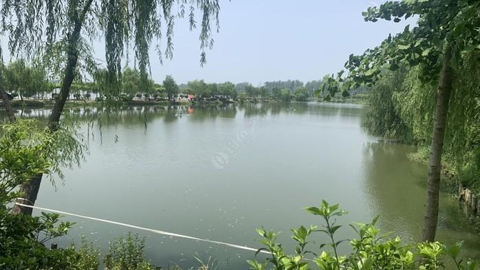 滨湖明珠码头垂钓中心