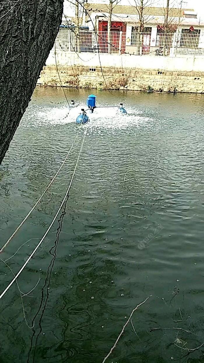 鱼儿飞野生垂钓生态园