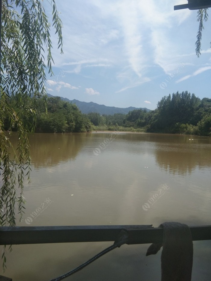 段李村鱼池