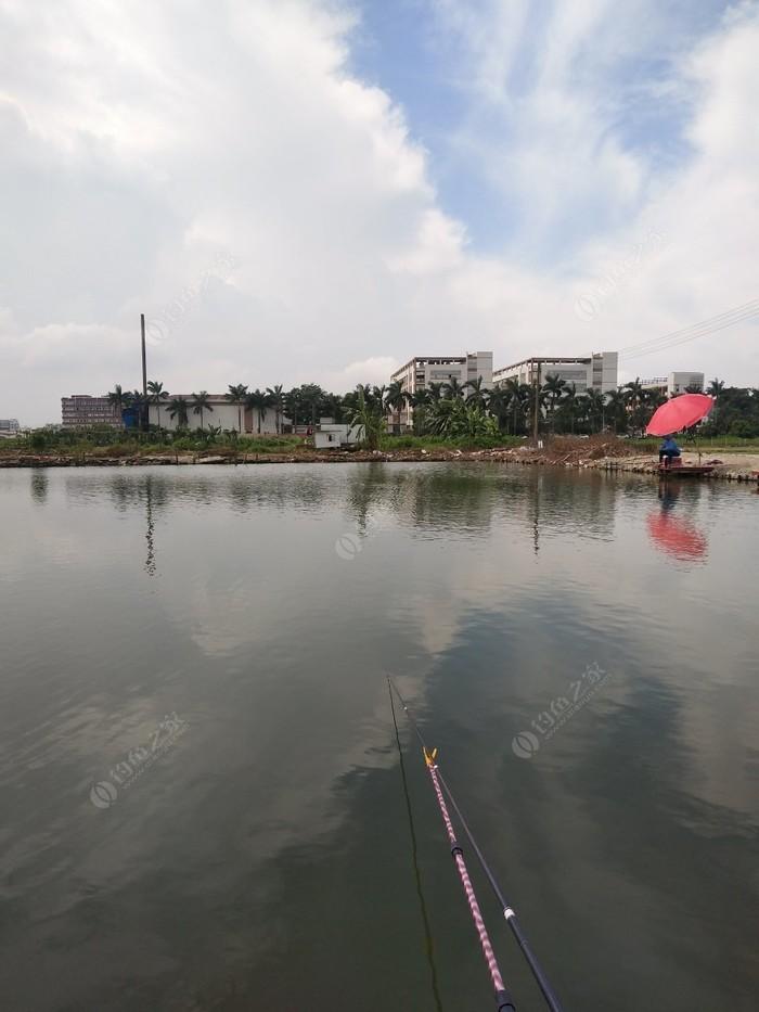 肥伟钓鱼场