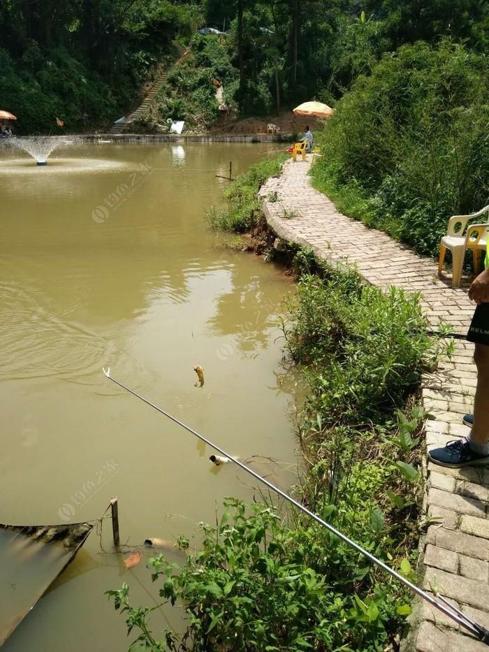 开心钓鱼场