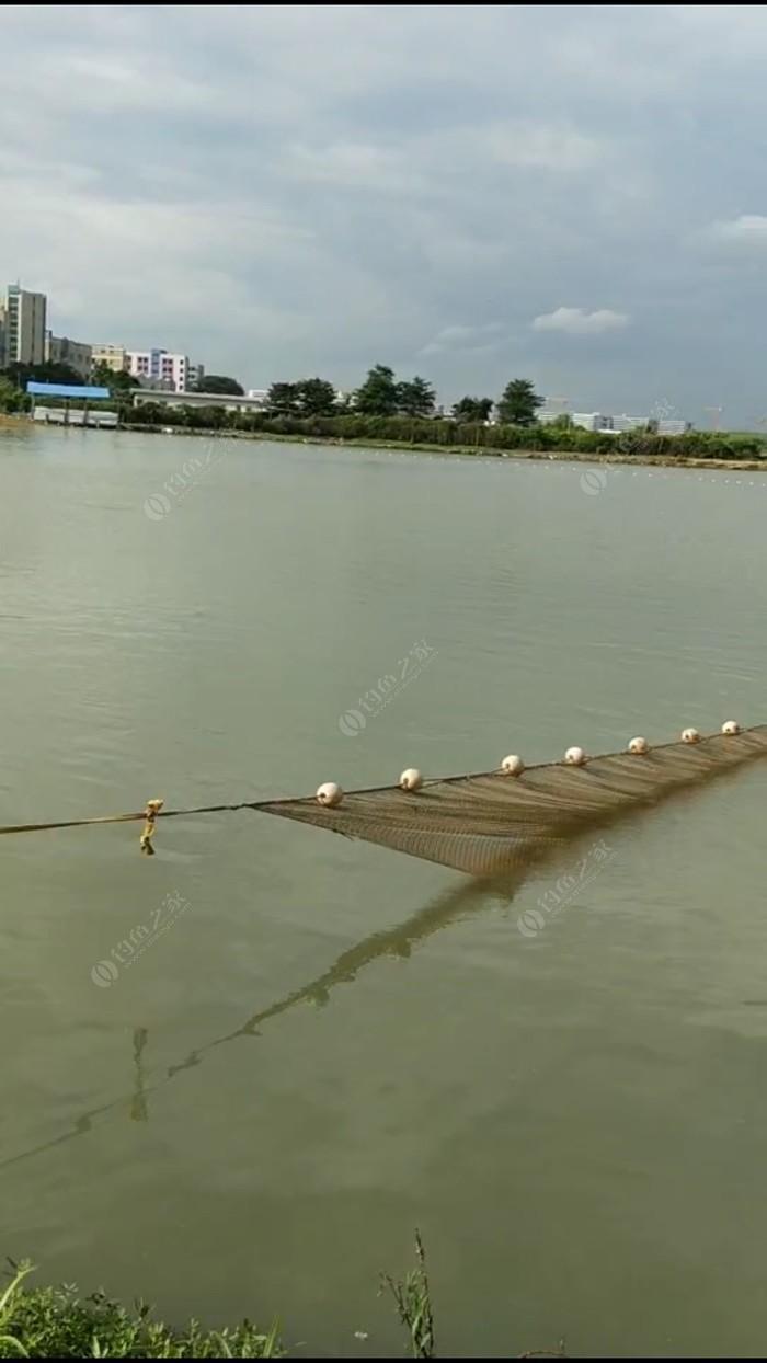 兄弟连钓鱼场