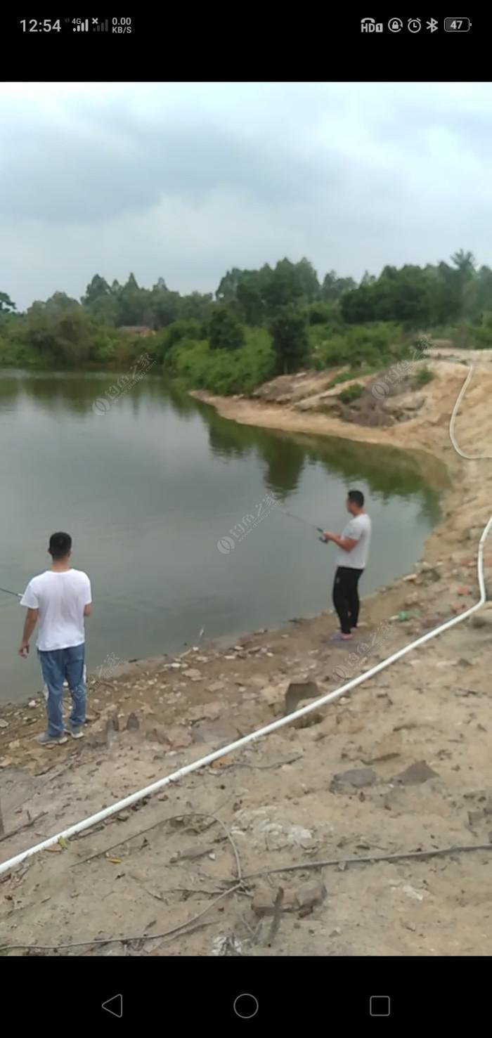 自然池塘场