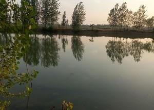京杭运河天气预报