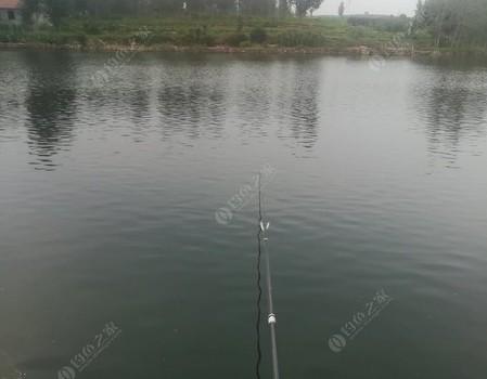 钓鲤鱼调漂总结与心得