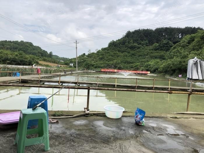 渔乐园钓场