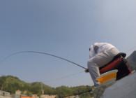 钓鱼之家无双鲤高碳新品6.3米实战测试  正28调 有腰力并兼容湖库