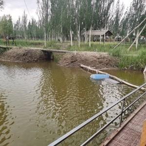 金鱼湖垂钓园天气预报