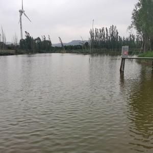 金鱼湖垂钓园