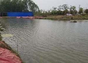 渔家乐垂钓园天气预报