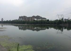 龙泉河天气预报