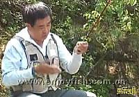 《程宁钓鱼视频》竞技钓鲫鱼教学视频第17集