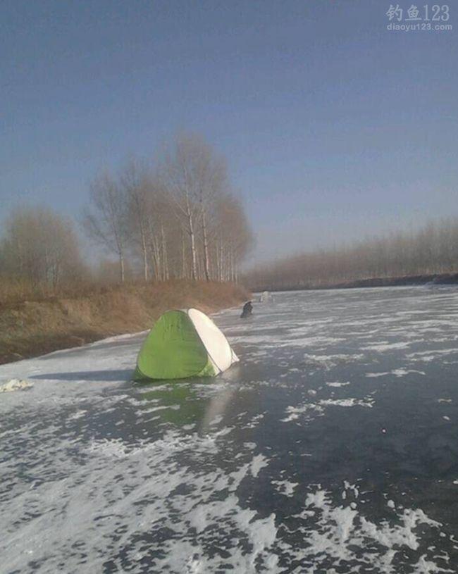 冬季冰钓鲫意外收获野生大鲤鱼