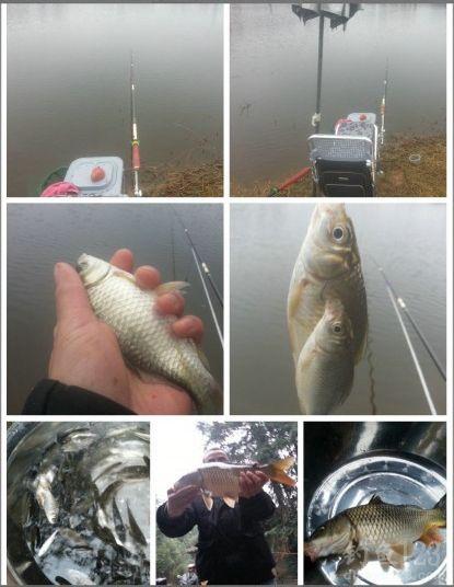 寒风中冬季钓获大鲤鱼