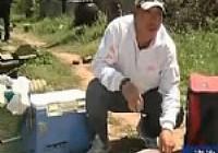 《张雪平钓鱼视频》第15集 钓鱼如何开饵技巧