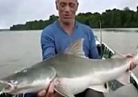 《河中巨怪》第四季 第9集 巨鱼巢穴