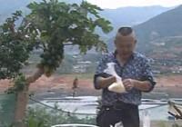 《钓遍中国玉米王》第5集:鏖战攀枝花