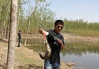 关于钓黑鱼的实用小技巧