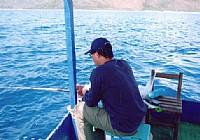 筏钓线组配置以及用饵技巧