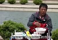 《配制鱼饵视频》化绍新谈鱼饵混养篇