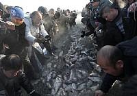 2012吉林查干湖冬季捕魚盛況