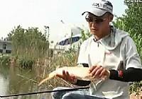 《垂钓对象鱼视频》王超主讲黑坑鱼塘垂钓鲤鱼视频