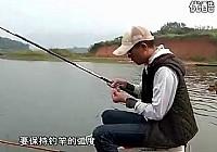 《垂钓工具鱼视频》武汉天元黄石之行钓鲢鳙