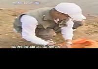 《野钓全攻略》CCTV5钓鱼教学之野钓全攻略 第5集