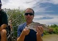 《極限釣魚》第二季 第4集 澳洲肺魚鲹魚