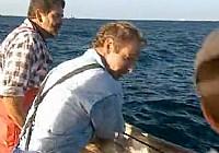 《極限釣魚》第二季 第6集 澳大利亞鮑魚