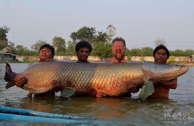 泰国4人耗2小时捕获460斤罕见巨滑舌鱼