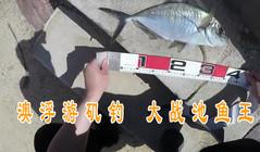 《全球钓鱼集锦》小伙在澳浮游矶钓,万元鱼竿能钓多大的鱼?