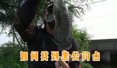 《全球钓鱼集锦》教你如何找到黑公钓点,学起来用一辈子!
