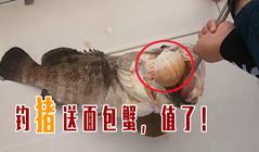 《全球钓鱼集锦》海钓大石斑鱼相当过瘾,还附赠面包蟹!