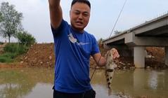 《浪秦路亚》脚背深的水却疯狂中鱼,水浅得你都不敢刺鱼!