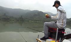 《麦子钓鱼》这种钓法真神奇,半个玉米居然统杀5个鱼种!